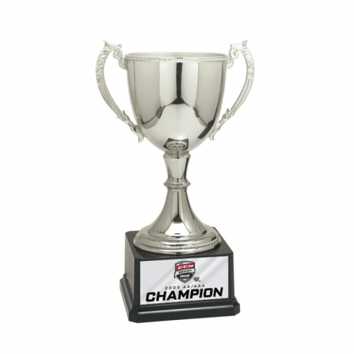 customizable personization individualization stand alone trophy award logo branding sport name number achievement tournment mememto