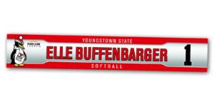 silver metallic metal locker nameplate customizable team color logos personlization individualize name number softball