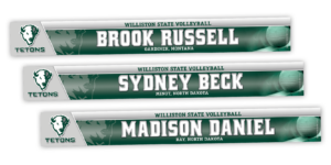 traditional standard locker nameplate workout room office customizable team color logos personlization individualize name number volleyball