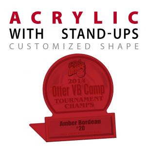 Custom Acrylic stand ups awards